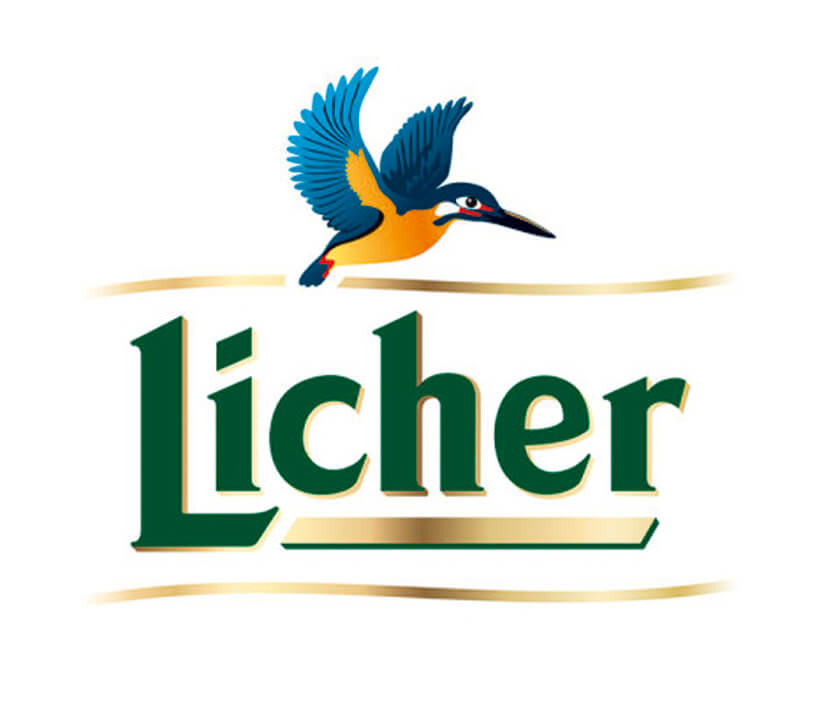 logo-referenzen_0047_Licher