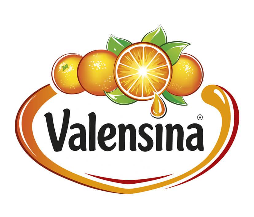 logo-referenzen_0088_Valensina