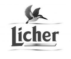 _Logosammlung_RUBICON_0009_Licher