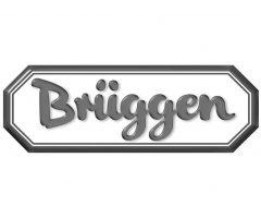 _Logosammlung_RUBICON_0018_Brüggen